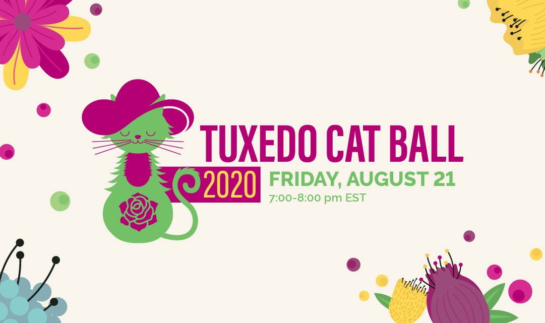 2020 Tuxedo Cat Ball 2020-08-21